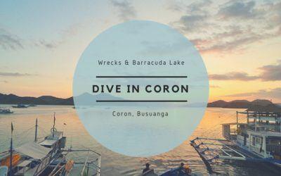 Diving the Wrecks in Coron + Barracuda Lake