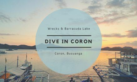 Diving the Wrecks in Coron + Barracuda Lake