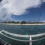 Dive Seafari Day 4, 5 – Diving Balicasag