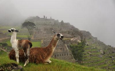 The Incas and Machu Picchu