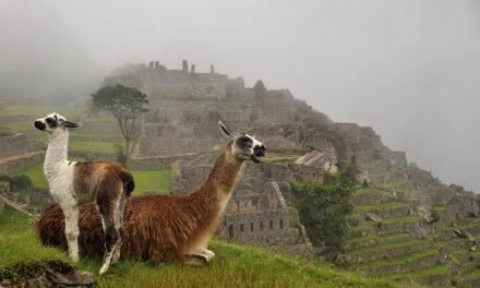The Incas and Machu Picchu