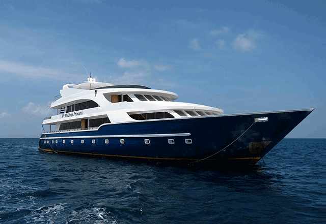 Hard Diving South Maldives on Live Aboard (Part 1)