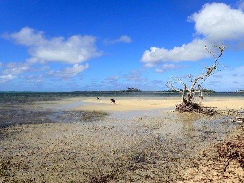 Pangaimotu Island Resort