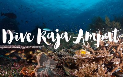 Diving Raja Ampat Liveaboard