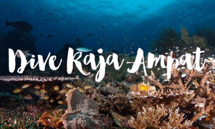 Diving Raja Ampat Liveaboard